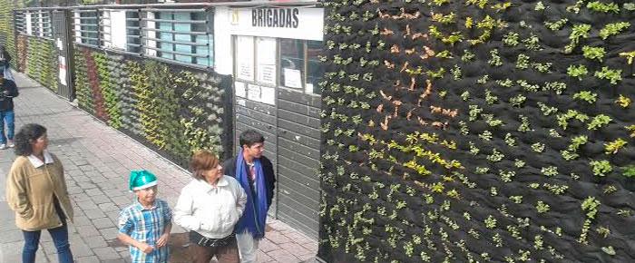 Instalar n muros verdes en edificios p blicos de for Muros verdes en mexico