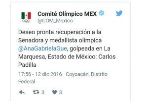 TOLUCA ANA GABRIELA GUEVARA AGRESIÓN1