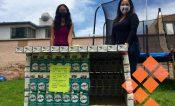 Crean casitas de tetrapack para control y cuidado de perritos sin hogar
